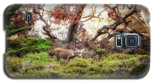 Point Lobos - Eden Galaxy S5 Case