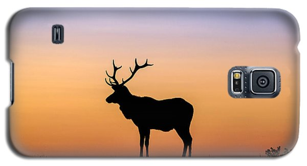 Point Reyes Elk Galaxy S5 Case