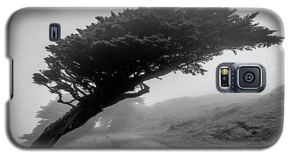 Point Reyes Fog Black And White Galaxy S5 Case