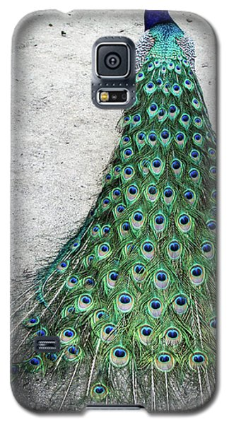 Poised Peacock Galaxy S5 Case