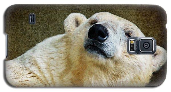 Polar Bear Galaxy S5 Case by Angela Doelling AD DESIGN Photo and PhotoArt
