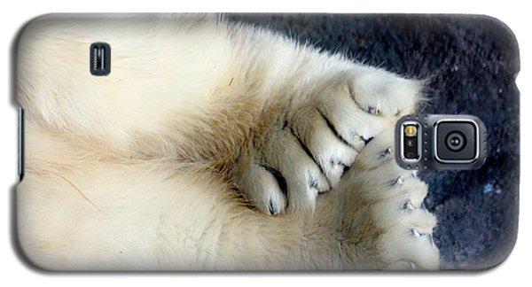 Polar Bear Paws Galaxy S5 Case