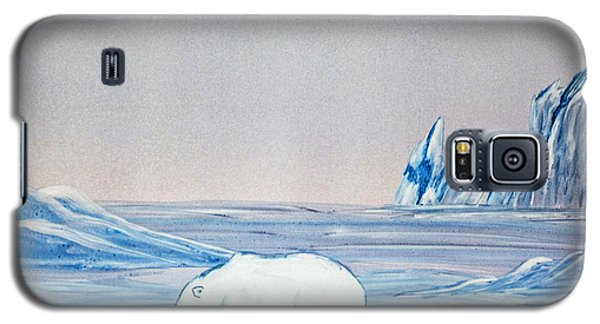 Polar Ice Galaxy S5 Case
