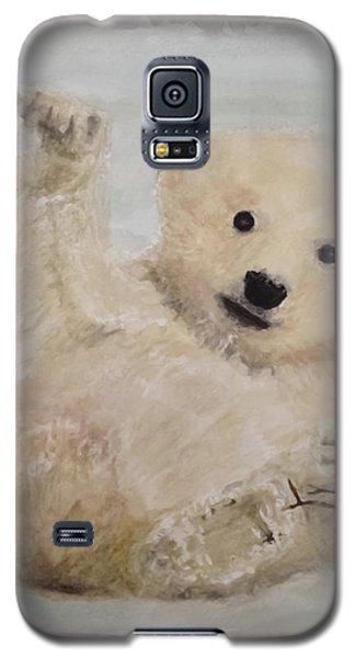 Polar Slide Galaxy S5 Case by Annie Poitras