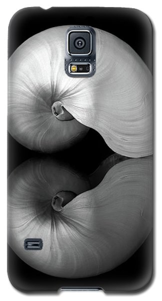 Polished Nautilus Shell And Reflection Galaxy S5 Case by Jim Hughes