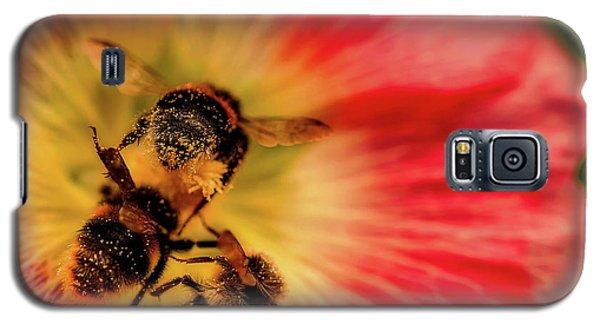 Pollination Galaxy S5 Case by Verena - Timschenko