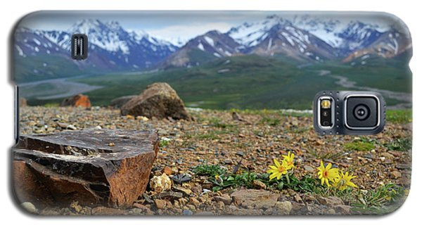 Galaxy S5 Case featuring the photograph Polychrome Pass, Denali by Zawhaus Photography
