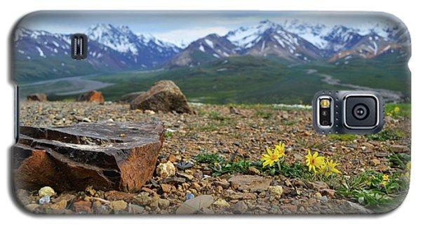 Polychrome Pass, Denali Galaxy S5 Case by Zawhaus Photography