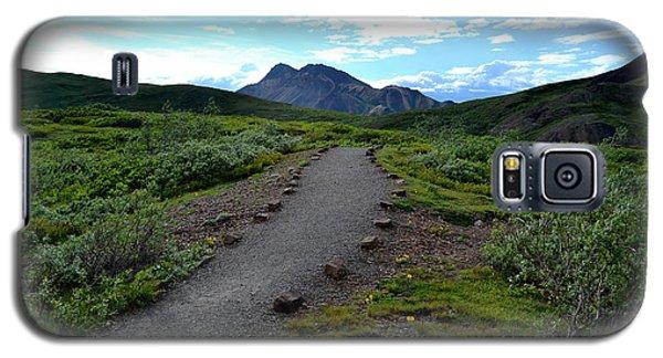 Polychrome Pass Trail, Denali Galaxy S5 Case by Zawhaus Photography