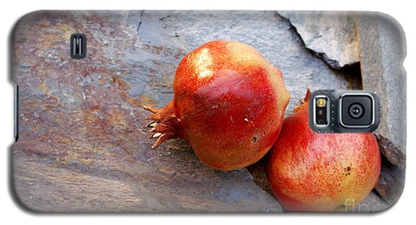 Galaxy S5 Case featuring the photograph Pomegranates On Stone by Cindy Garber Iverson