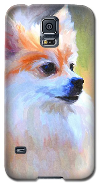 Pomeranian Portrait Galaxy S5 Case