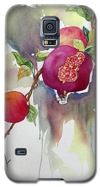 Pomegranates Galaxy S5 Case