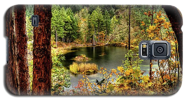 Pond At Golden Or. Galaxy S5 Case