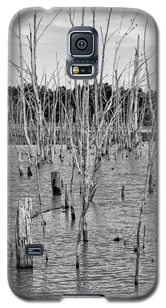 Pond Of Trees Galaxy S5 Case