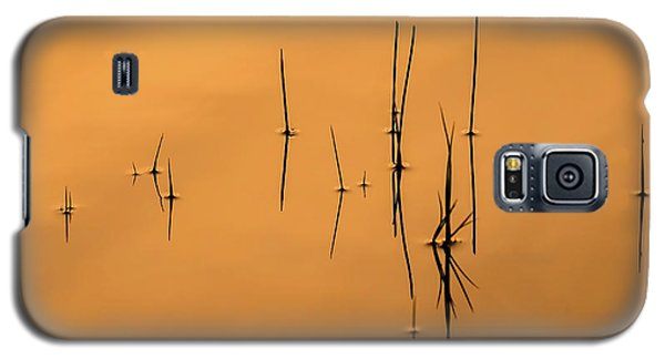 Pond Reeds In Reflected Sunrise Galaxy S5 Case