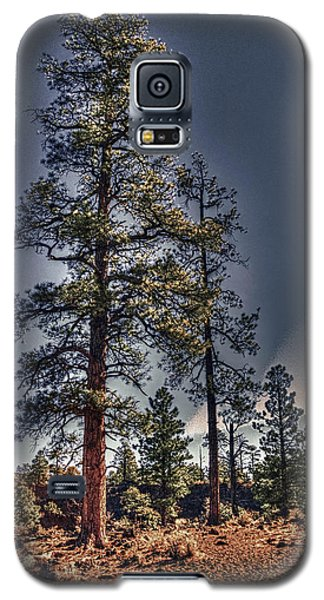 Ponderosa Pines At The Bonito Lava Flow Galaxy S5 Case