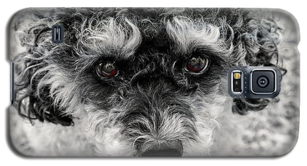 Poodle Eyes Galaxy S5 Case
