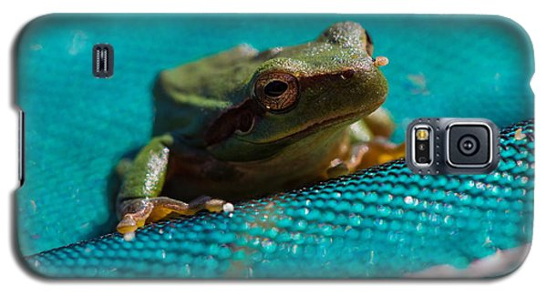Galaxy S5 Case featuring the photograph Pool Frog by Richard Patmore