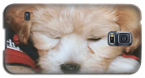 Galaxy S5 Case featuring the photograph Pooped Pup by Diane Merkle