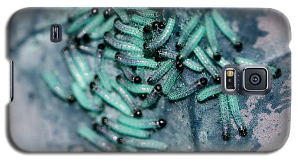 Galaxy S5 Case featuring the photograph Pop Macro No. 1 by Laura Melis
