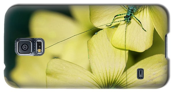 Galaxy S5 Case featuring the photograph Pop Macro No. 2 by Laura Melis