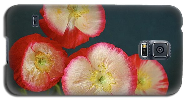 In Flanders Field Galaxy S5 Case