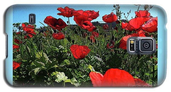 Poppies. Galaxy S5 Case