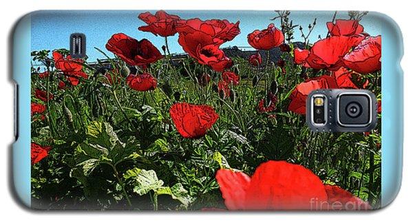 Poppies. Galaxy S5 Case by Don Pedro De Gracia