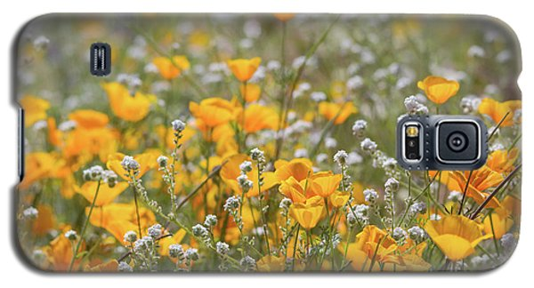 Galaxy S5 Case featuring the photograph Poppies Fields Forever  by Saija Lehtonen