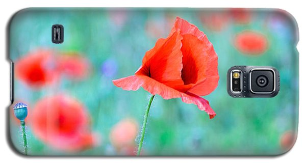 Galaxy S5 Case featuring the photograph Poppies In A Field by Marion McCristall