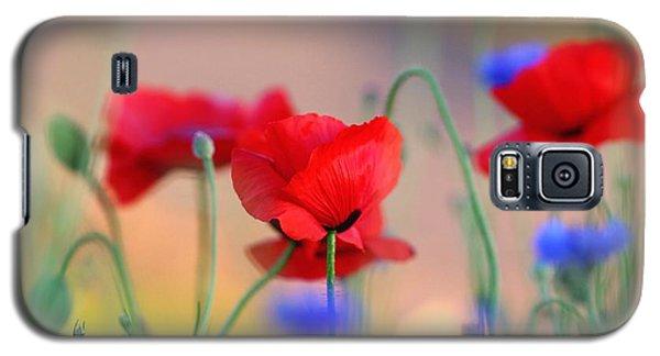 Poppies In Spring  Galaxy S5 Case by Lynn Hopwood