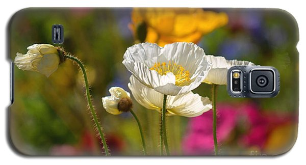 Poppies In The Spring Galaxy S5 Case by Deb Halloran