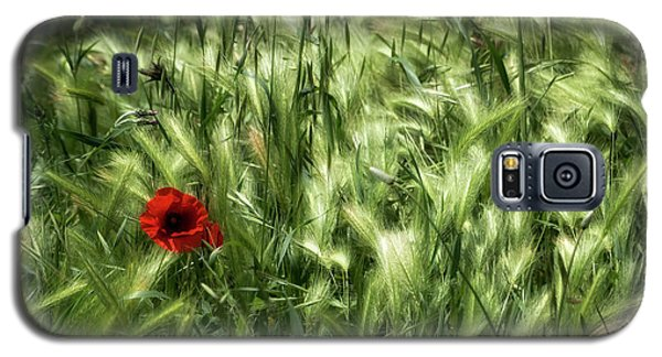 Poppies In Wheat Galaxy S5 Case