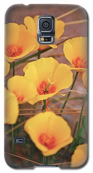 Poppies On Mount Lemmon Galaxy S5 Case