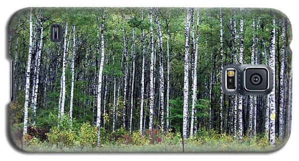 Popple Trees Galaxy S5 Case by Susan Crossman Buscho