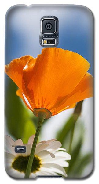 Poppy And Daisies Galaxy S5 Case