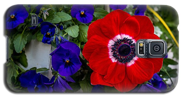 Poppy And Pansies Galaxy S5 Case