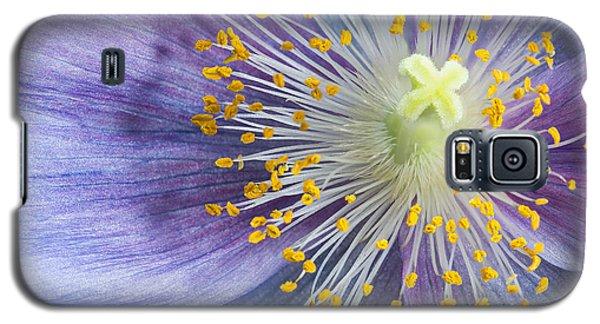 Poppy Fireworks Galaxy S5 Case