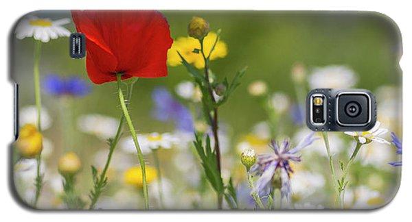 Poppy In Meadow  Galaxy S5 Case