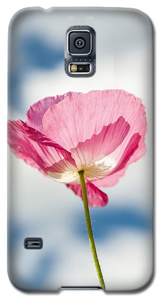Poppy In The Clouds Galaxy S5 Case