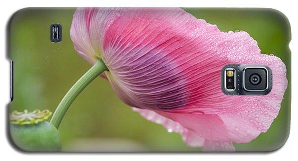 Poppy In The Wind Galaxy S5 Case