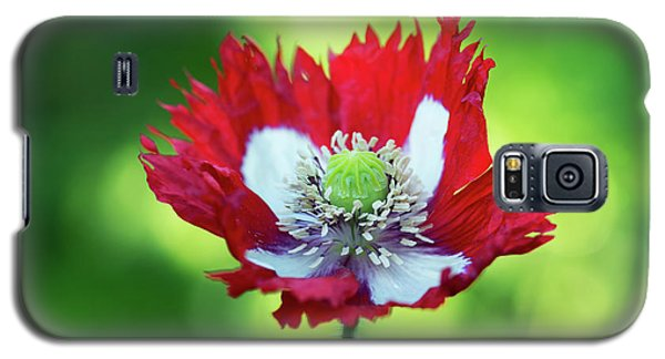 Galaxy S5 Case featuring the photograph Poppy Victoria Cross by Tim Gainey