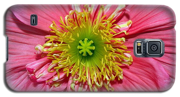Galaxy S5 Case featuring the photograph Poppy by Vivian Krug Cotton