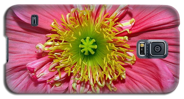 Poppy Galaxy S5 Case by Vivian Krug Cotton