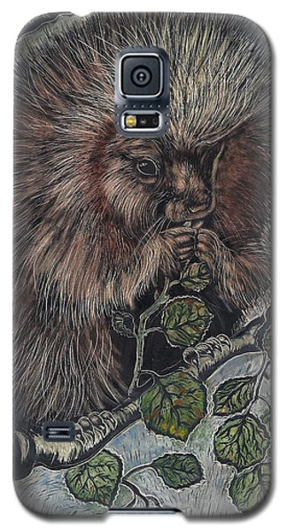 Galaxy S5 Case featuring the drawing Porcupine In Aspen by Dawn Senior-Trask