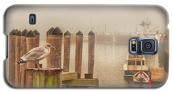 Portland Harbor Morning Galaxy S5 Case