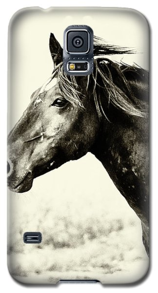Portrait Galaxy S5 Case by Mary Hone