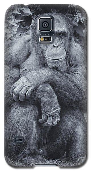 Portrait Of A Chimp Galaxy S5 Case