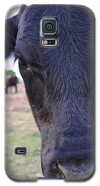 Portrait Of A Cow Galaxy S5 Case