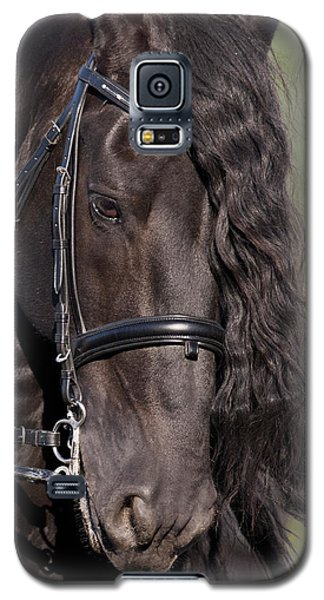 Portrait Of A Friesian Galaxy S5 Case by Wes and Dotty Weber